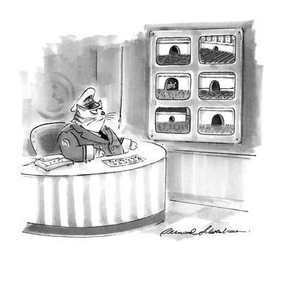 https://imgc.allpostersimages.com/img/posters/cat-security-guard-watches-mousehole-on-closed-circuit-tv-new-yorker-cartoon_u-L-PGT6GR0.jpg?artPerspective=n