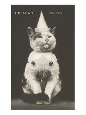 Cat with Pointed Hat, Court Jester
