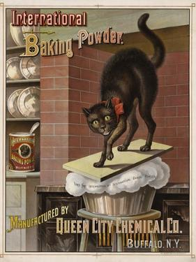 Catastrophe in the Kitchen, 1885