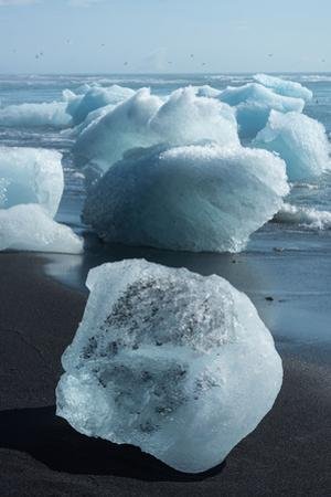 Atlantic Coast with Iceberg Remains at the Jškulsarlon by Catharina Lux