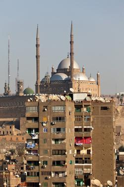 Egypt, Cairo, View from Mosque of Ibn Tulun on Old Town and Citadel by Catharina Lux