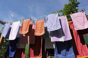 Farm, Clothesline, Towels by Catharina Lux