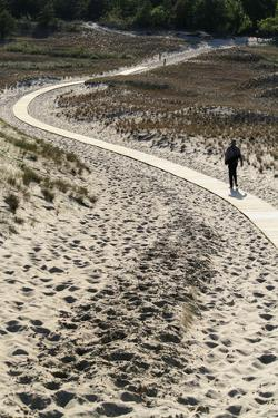 Lithuania, Curonian Spit, Perwalka, Drifting Sand Dune, Path by Catharina Lux