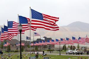 USA, Cemetery, Memorial-Day, Flags by Catharina Lux