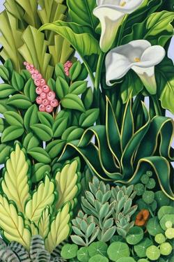 Foliage I, 2003 by Catherine Abel