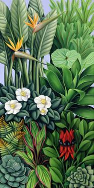 Foliage II, 2005 by Catherine Abel