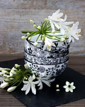 Flowers in a Bowl by Catherine Beyler