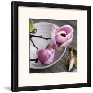 Magnolia on a Bowl by Catherine Beyler