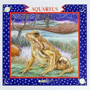 Aquarius by Catherine Bradbury