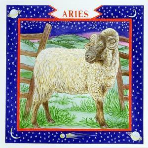 Aries by Catherine Bradbury