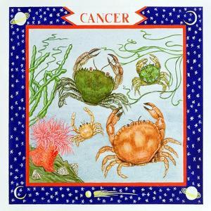 Cancer by Catherine Bradbury