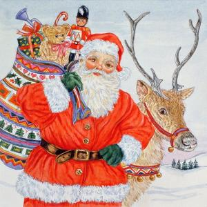 Father Christmas and His Reindeer by Catherine Bradbury