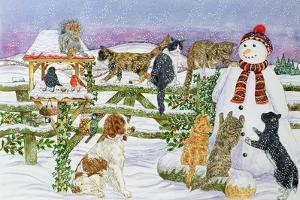 The Snowman and His Friends by Catherine Bradbury
