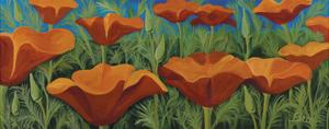 Poppies by Catherine Breer