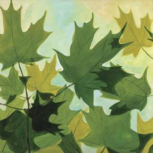 Summer Leaves by Catherine Breer