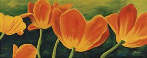 Tulips by Catherine Breer