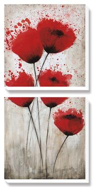 Luminous Crimson II by Catherine Brink