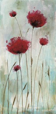 Splash Poppies I by Catherine Brink