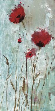 Splash Poppies II by Catherine Brink