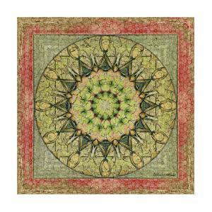 Floress Mandala I by Catherine Kohnke