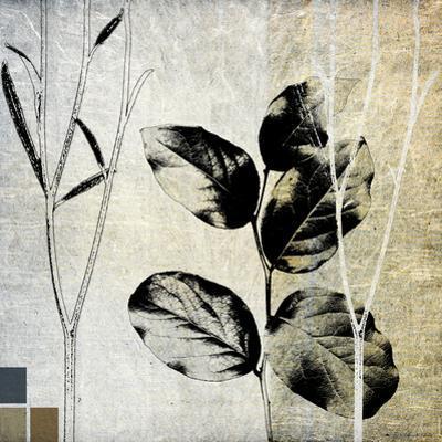Leaves & Stems I