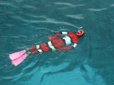 Young Boy Snorkelling in Nemo Stinger Suit