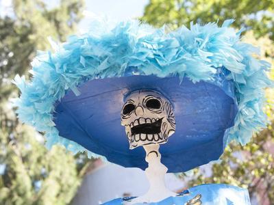 https://imgc.allpostersimages.com/img/posters/catrina-skeleton-san-miguel-de-allende-mexico_u-L-PHAJDO0.jpg?p=0