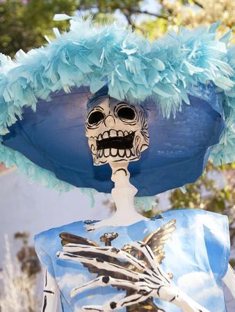 https://imgc.allpostersimages.com/img/posters/catrina-skeleton-san-miguel-de-allende-mexico_u-L-PHAJEB0.jpg?p=0