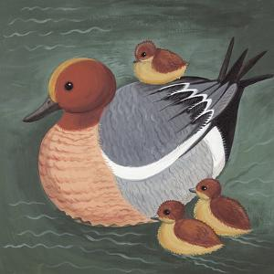Dawdling Ducks by Catriona Hall