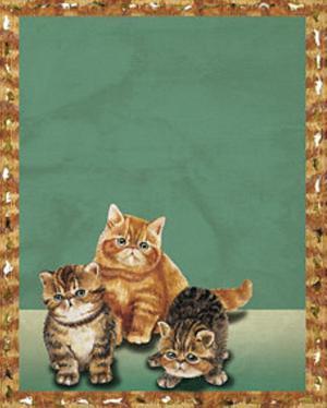 Cats II