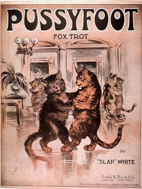 Cats Pussyfoot Fox Trot, USA, 1920