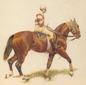 Cavalier I