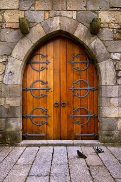 Beautiful Old Wooden Door with Iron Ornaments in a Medieval Castle by ccaetano