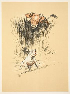 Bull and Dog in Field (Colour Litho) by Cecil Aldin