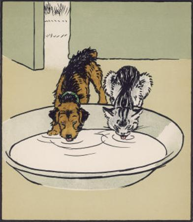 Dog and a Cat Drink Milk from a Large Bowl by Cecil Aldin