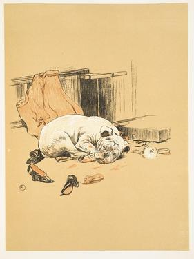 Not Finding the Chocolates, A Gay Dog, Story of a Foolish Year, Aldin, Cecil Charles Windsor by Cecil Aldin