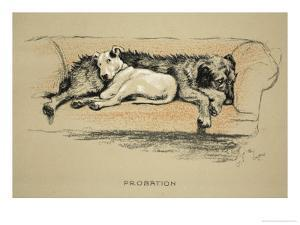 Probation, 1930, 1st Edition of Sleeping Partners by Cecil Aldin