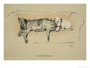 Separation, 1930, 1st Edition of Sleeping Partners by Cecil Aldin