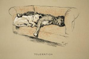 Toleration, 1930, 1st Edition of Sleeping Partners by Cecil Aldin