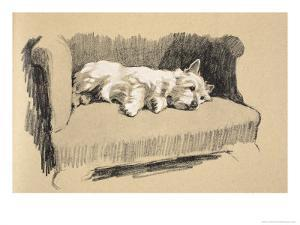 West Highlander, 1930, Just Among Friends, Aldin, Cecil Charles Windsor by Cecil Aldin