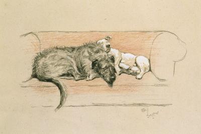 Wolfhound and Bull Terrier Asleep on a Sofa