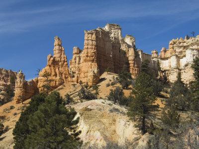 https://imgc.allpostersimages.com/img/posters/cedar-breaks-national-monument-utah-united-states-of-america-north-america_u-L-P7NTOG0.jpg?p=0