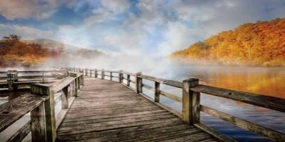 Dancing Fog at the Lake by Celebrate Life Gallery