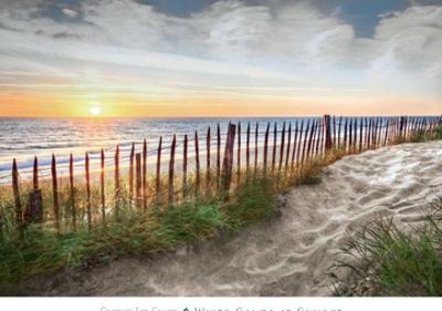 White Sands at Sunset by Celebrate Life Gallery
