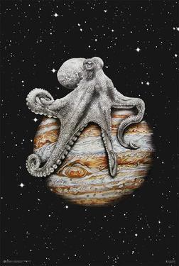 Celestial Cephalopod