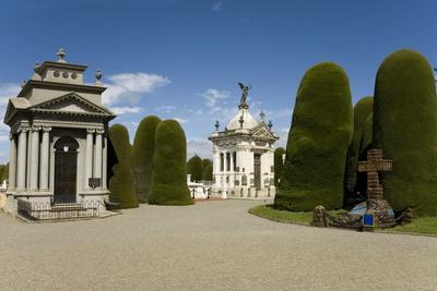 https://imgc.allpostersimages.com/img/posters/cementario-municipal-topiary-cypress-trees-punta-arenas-patagonia-chile-south-america_u-L-PQ8N2N0.jpg?p=0