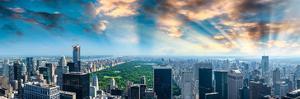Central Park at Dawn