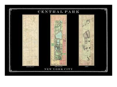 https://imgc.allpostersimages.com/img/posters/central-park-development-composition1815-1885-dark-new-york-united-states-2007_u-L-PHJMWQ0.jpg?p=0