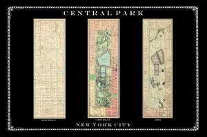 Central Park Development Composition1815-1885 - dark, New York, United States, 2007
