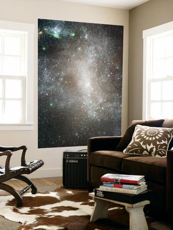 https://imgc.allpostersimages.com/img/posters/central-region-of-the-barred-spiral-galaxy-ngc-1313_u-L-PFHCUW0.jpg?artPerspective=n